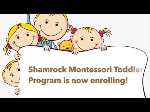Shamrock Toddler Open House