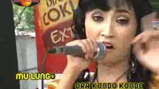 Gambar cover Rina Amelia - Kusumaning Ati (Official Music Videos)