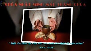 Tin Mừng - Lễ Mình Máu Thánh Chúa năm A