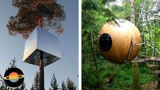 10 niesamowitych domków na drzewie