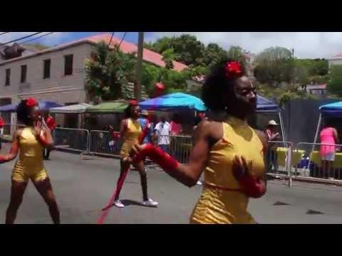 VI Showcase Cultural Video 2014