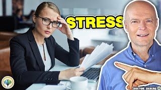 Can Stress Kill You