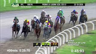 Vidéo de la course PMU PREMIO LA LAGUNA AZUL 2011 (PELOTON B)