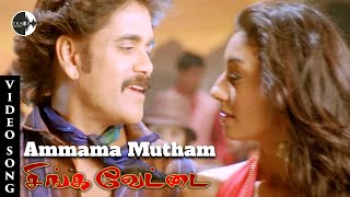 Ammama Mutham Tamil Song | Singavettai Movie | Kedi Telugu Movie | Nagarjuna | Mamta Mohandas