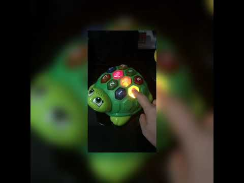 LeapFrog Melody The Musical Turtle Review