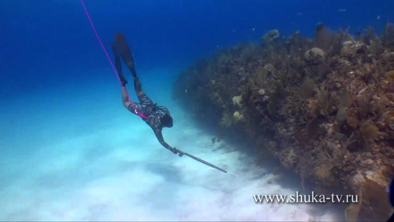 Подводная охота на Кубе часть 4. Spearfishing in Cuba