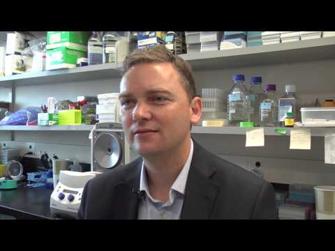 Cancer researcher explains multiple myeloma relapse