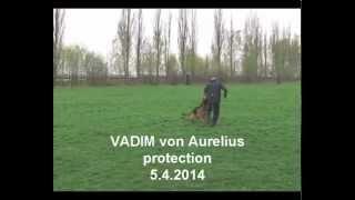 VADIM von Aurelius