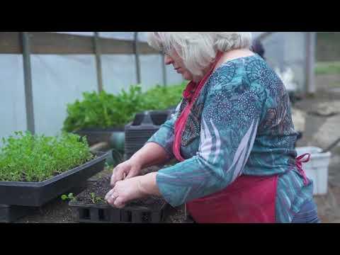 Radio Bristol Farm Report - David Lay Farms