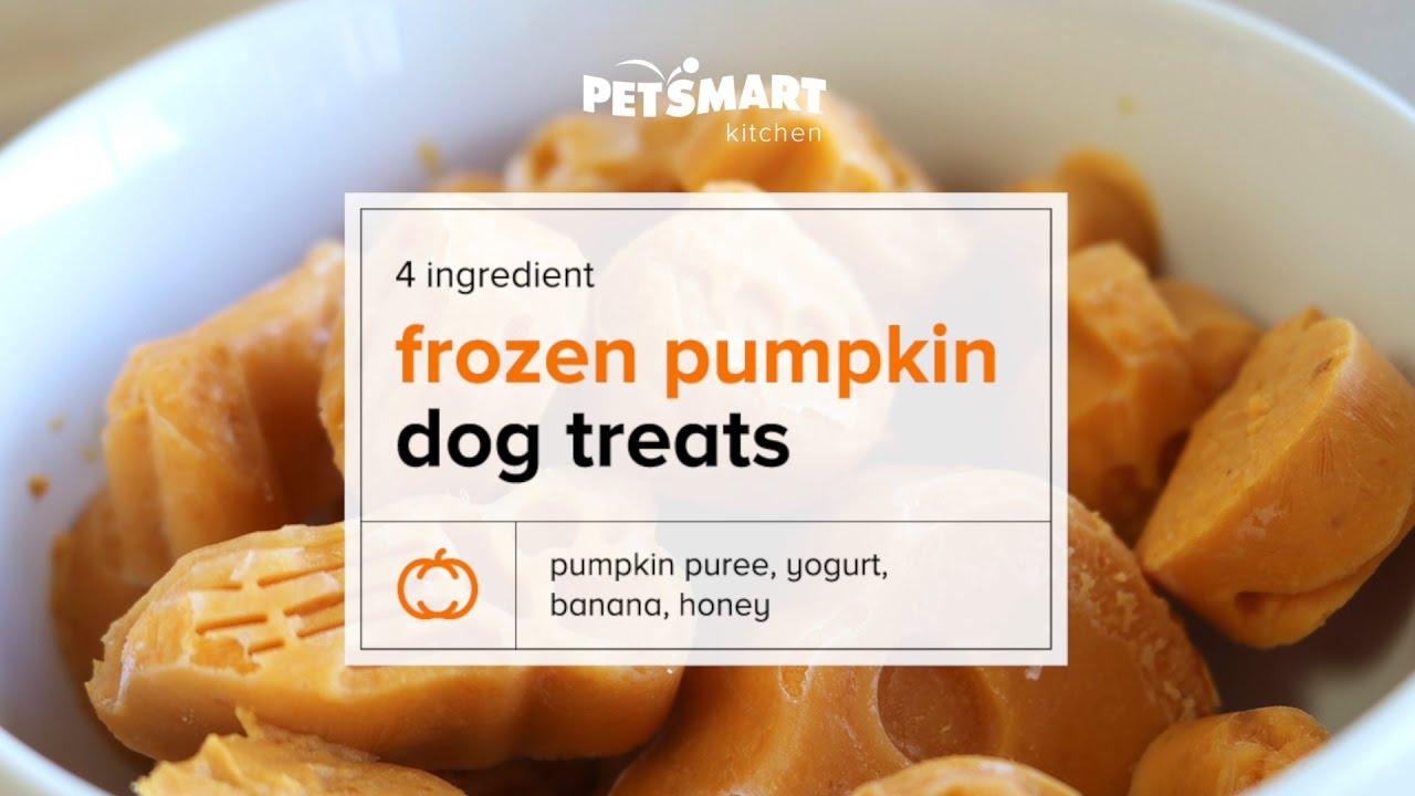 PetSmart Kitchen DIY Frozen Pumpkin Dog Treats