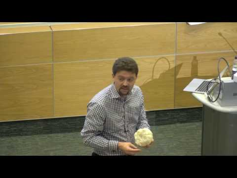 Navigating the brain: software programming for surgical planning - UCL Lunch Hour Lecture