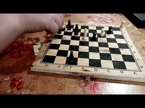 Очень интересная настольная игра слоники. Игра бесплатно. Во что сыграть семьёй дома. Игры СССР