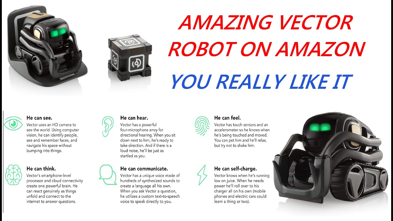 Vector Robot by Anki A Home Robot Who Hangs Out Helps Out With ...
