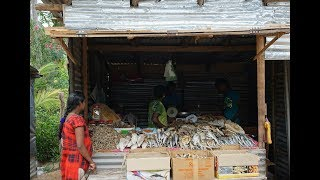 🎥 Sri Lankan Fish Market - Food Travel Blog - Sri Lanka Trincomalee Vlog Street Food - Trinco