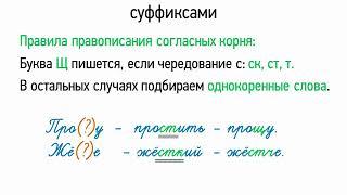 Правописание согласных корня перед суффиксами (5 класс, видеоурок-презентация)