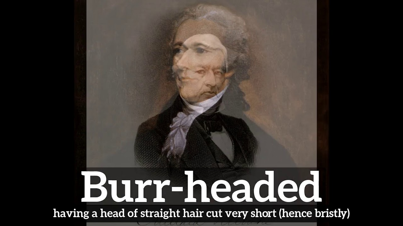 How to Say Burr-headed in English? | What is Burr-headed? | How Does  Burr-headed Look?