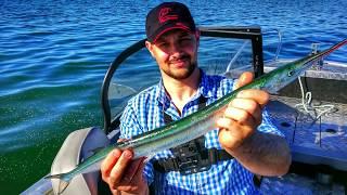 САРГАН на ТРОЛІНГ * БАЛТІЙСЬКЕ МОРЕ * TUULEHAUGI РИБАЛКА * FISHING FOR GARFISH