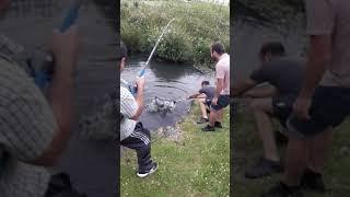 Рибалка у Франції (прикол) Pêche en France
