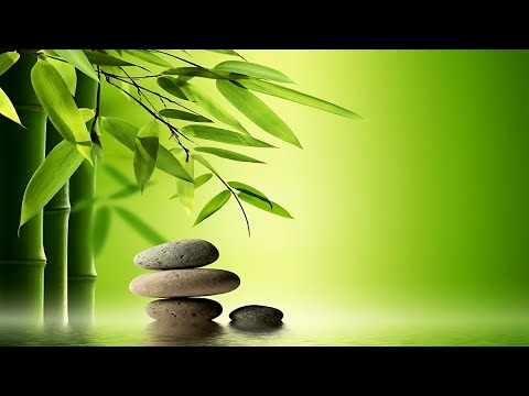 Japanese Spa Music - Zen Garden