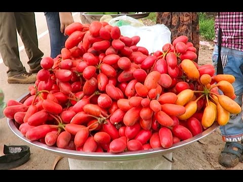 Fruits & Honey Selling in Cambodia - Prey Veng Province