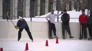 Удар подсечкой. Пособие по хоккею с мячом ИФКСиЗ САФУ