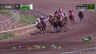 Vidéo de la course PMU PREMIO DESNIVEL H
