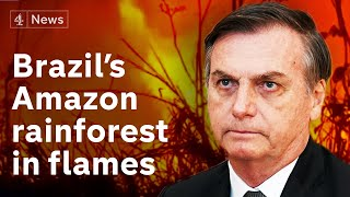 Thousands of fires ravage Amazon rainforest - most started intentionally