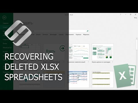 What Program Can Open an XLS and XLSX File? Equivalents of EXCEL
