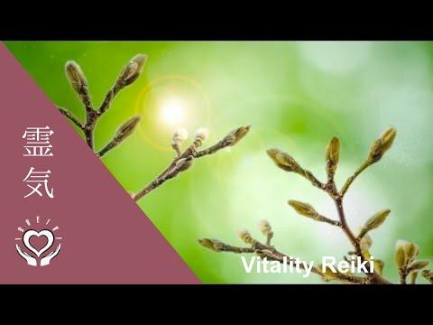 Reiki for Overall Vitality | Energy Healing