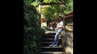 Zipline | Maşukiye - Sapanca