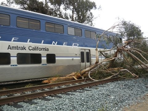 Thumbnail: Amtrak Train Hits Large Eucalyptus Tree in Sorrento Valley - El Nino Storms 2016