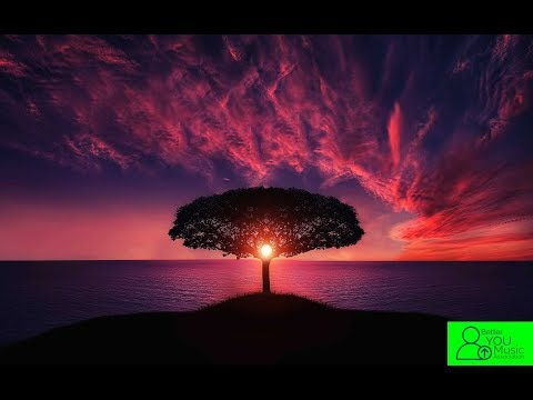 Four Seasons - Vivaldi COMPLETE FULL VERSION The Best Classical Music for Relaxation and Studying