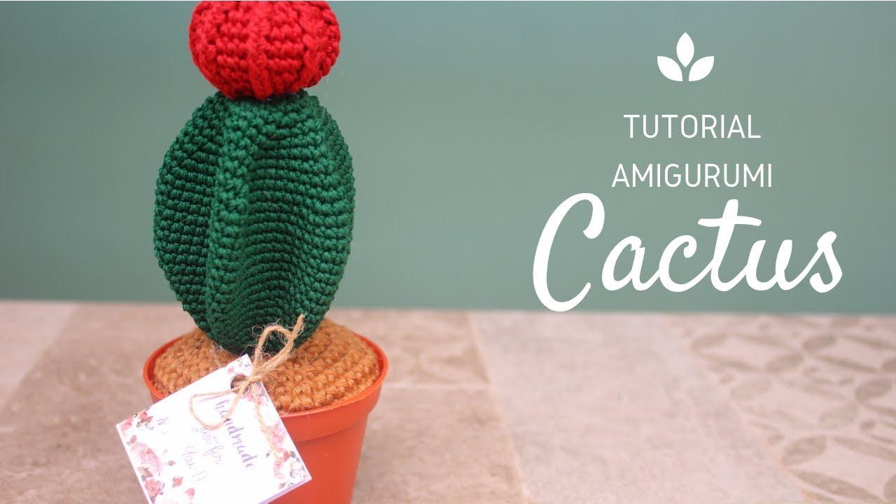 Tutorial Mini Cactus en Crochet … | Cactos | Blumen häkeln, Häkeln ... | 720x1280