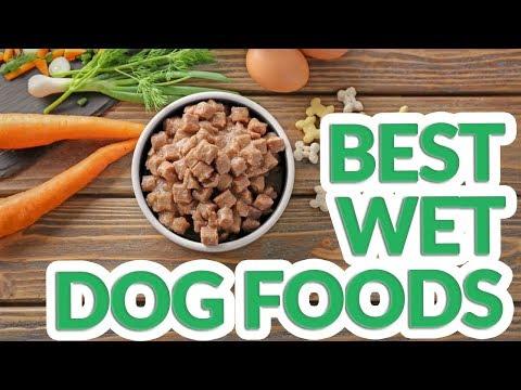 Best Wet Dog Food 2019 - 10 TOP Wet Dog Foods