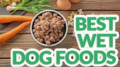 Best Wet Dog Food 2019 - 10 TOP Wet Dog Foods