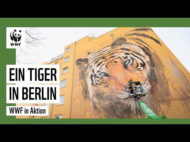 Streetart: Ein Tiger für Berlin