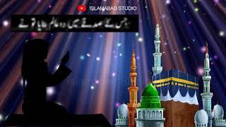 Islamic Whatsapp Status - DUA Whatsapp Status - Heart Touching DUA Whatsapp Status - DUA Status