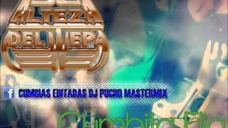CUMBIA ELIA - DJ PUCHO MASTERMIX - Kumbias con wepa