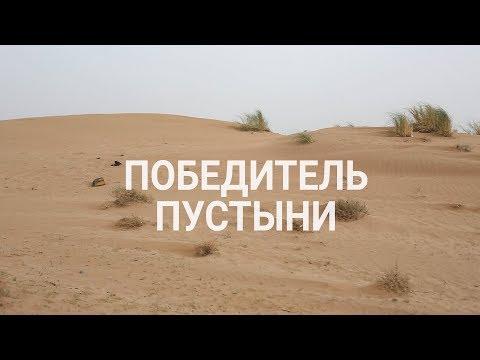 Победитель пустыни