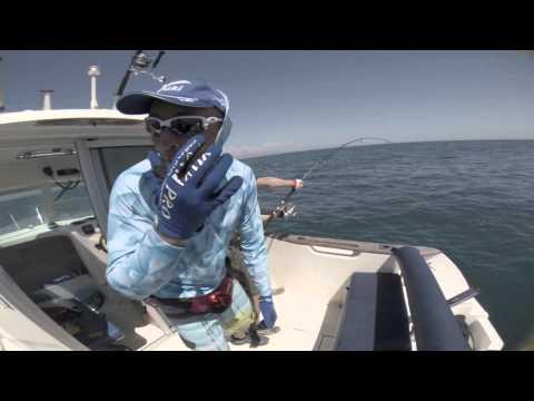 Bluefin Tuna Popping In The Ebro Delta