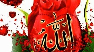 Video Pashto Hamd Nisar Ahmad Nisar& Aslam Fida- Fani Dunya Pani Bazar download MP3, 3GP, MP4, WEBM, AVI, FLV Agustus 2018