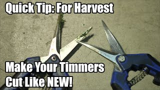 Harvest Tip - Make Your Trimmers Like NEW!