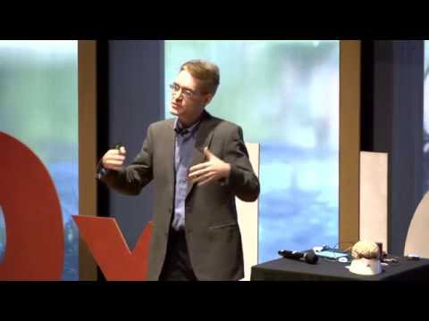 The Mathematics Of Intelligence | Geoff Goodhill | TEDxUQ
