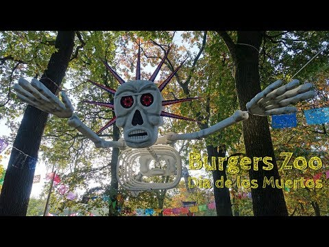 Burgers Zoo in Holland in 4k - durch Bush, Ocean, Mangrove und Co am Dia de los Muertos
