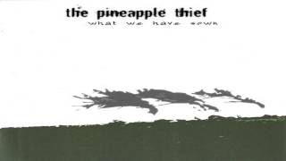 Watch Pineapple Thief All You Need To Know video