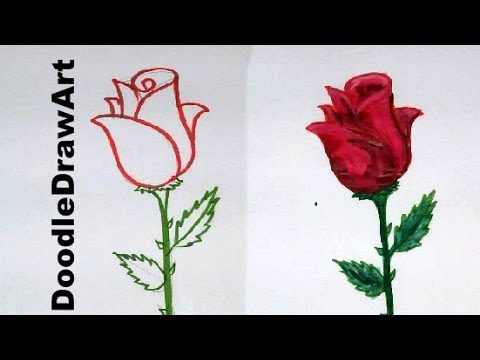 Drawing How To Draw a Rose step by step easy lesson for kids