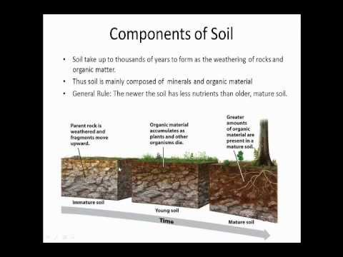Formation of soil explanation powerpoint youtube for Explain the formation of soil