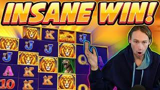 INSANE WIN! Safari Gold BIG WIN - Casino Games from Casinodaddy live stream