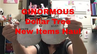 Dollar Tree GINORMOUS and LOTS of New Items Haul || August 20, 2019