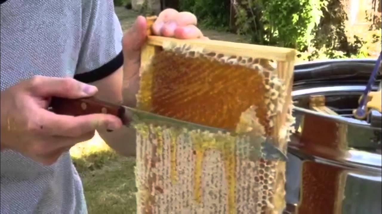 extraction du miel 29 juin 2015 youtube. Black Bedroom Furniture Sets. Home Design Ideas